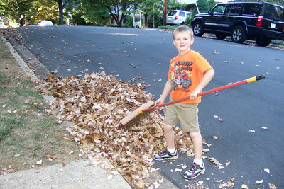 Cleaning up the leaves. (Image taken with FinePix F10 at ISO 400, f2.8, 1/140 sec and 8mm)