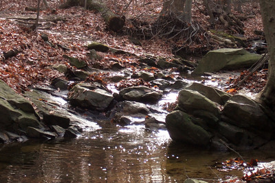 Christmas Eve walk along Donaldson Run Stream to the Potomac River. (Image taken with FinePix F10 at ISO 400, f5.0, 1/220 sec and 24mm)