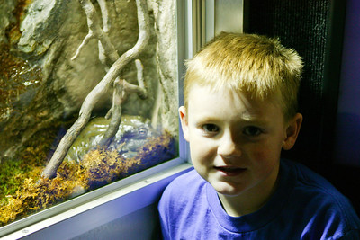 Christopher checking out a big bullfrog at the National Aquarium in Baltimore (Image taken with Canon EOS-1DS at ISO 400, f2.8, 1/30 sec and 54mm)