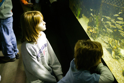 National Aquarium in Baltimore (Image taken with Canon EOS-1DS at ISO 800, f2.8, 1/40 sec and 45mm)