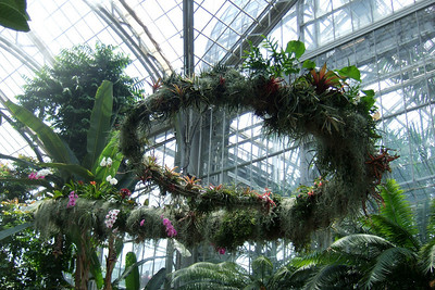 4th of July on the National Mall. U.S. Botanic Garden. (Image taken with FinePix F10 at ISO 100, f2.8, 1/450 sec and 8mm)