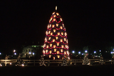After watching the Washington Capitals defeat the Ottawa Senators 6-3 on New Year's Day, Pat and Christopher stopped by The Ellipse to check out the National Christmas Tree and the Yule Log. (Image taken with FinePix F10 at ISO 800, f4.7, 1/27 sec and 20.1mm)