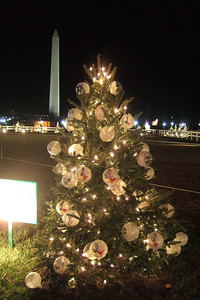 State of Texas Christmas Tree at The Ellipse. (Image taken with FinePix F10 at ISO 800, f2.8, 1/12 sec and 8mm)