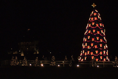 After watching the Washington Capitals defeat the Ottawa Senators 6-3 on New Year's Day, Pat and Christopher stopped by The Ellipse to check out the National Christmas Tree and the Yule Log. (Image taken with FinePix F10 at ISO 800, f4.7, 1/100 sec and 20.1mm)