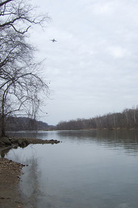 View of Potomac River from Windy Run Park, Arlington VA (Image taken with FinePix F10 at ISO 80, f5.0, 1/550 sec and 8mm)
