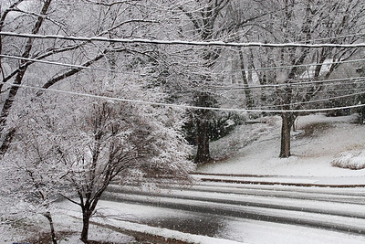 The first snow of the year. (Image taken by Kathy T. Kane on 05 Dec 2009 with Canon EOS 20D at ISO 400, f8.0, 1/160 sec and 30mm)