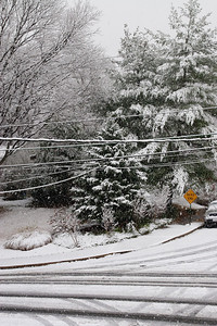 The first snow of the year. (Image taken by Kathy T. Kane on 05 Dec 2009 with Canon EOS 20D at ISO 400, f8.0, 1/160 sec and 33mm)