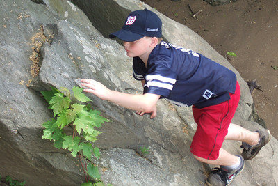 Christopher doing a little rock climbing.  The weather was too nice to stay inside, so Pat and Christopher went for a walk around Theodore Roosevelt Island. (Image taken with FinePix F10 at ISO 200, f5.0, 1/150 sec and 24mm)
