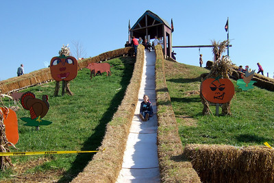 Sydney on the big slide at the Cox Farms Pumpkin Patch (Image taken by Sydney J. Kane on 03 Nov 2009 with FinePix F10 at ISO 80, f4.5, 1/400 sec and 8mm)