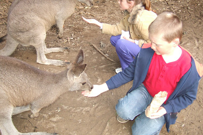 Sydney and Christopher feeding the kangaroos at the Nowra Wildlife Park (08 Jul 2009) (Image taken by Kathy T. Kane with FinePix F10 at ISO 400, f2.8, 1/125 sec and 8mm)