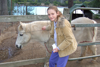 Sydney petting a horse at the Nowra Wildlife Park (08 Jul 2009) (Image taken by Kathy T. Kane with FinePix F10 at ISO 200, f2.8, 1/180 sec and 8mm)
