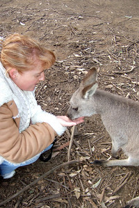 Kathy feeding a kangaroo at the Nowra Wildlife Park (Image taken with FinePix F10 at ISO 400, f2.8, 1/125 sec and 8mm)