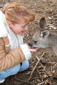 Kathy feeding a kangaroo at the Nowra Wildlife Park (Image taken with FinePix F10 at ISO 800, f3.7, 1/150 sec and 14.1mm)