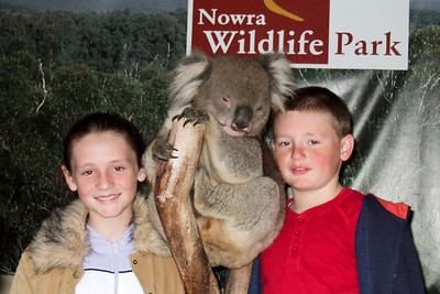 Sydney and Christopher next to a koala at Nowra Wildlife Park (08 Jul 2009) (Image taken by Kathy T. Kane with FinePix F10 at ISO 800, f4.3, 1/100 sec and 18.1mm)