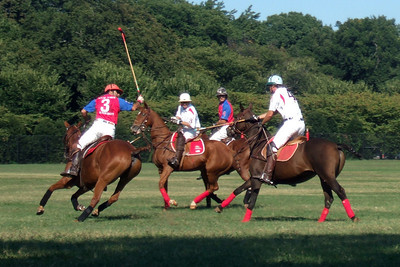 The weather was beautiful, so we spent the afternoon at West Potomac Park on the National Mall watching the 2009 America's Polo Cup Fall Classic matches between the U.S. Polo Team, American/India Pro-Am Team and the Washington Patriots. (Image taken by Sydney J. Kane on 19 Sep 2009 with FinePix F10 at ISO 100, f5.0, 1/480 sec and 24mm)