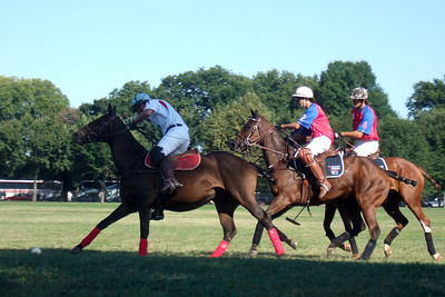 The weather was beautiful, so we spent the afternoon at West Potomac Park on the National Mall watching the 2009 America's Polo Cup Fall Classic matches between the U.S. Polo Team, American/India Pro-Am Team and the Washington Patriots. (Image taken by Sydney J. Kane on 19 Sep 2009 with FinePix F10 at ISO 100, f5.0, 1/250 sec and 24mm)