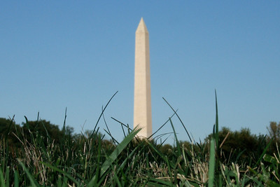 """Sydney titled this one """"The Grass is Taking Over DC."""" (Image taken by Sydney J. Kane on 19 Sep 2009 with FinePix F10 at ISO 200, f8.0, 1/850 sec and 24mm)"""