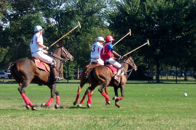 The weather was beautiful, so we spent the afternoon at West Potomac Park on the National Mall watching the 2009 America's Polo Cup Fall Classic matches between the U.S. Polo Team, American/India Pro-Am Team and the Washington Patriots. (Image taken by Sydney J. Kane on 19 Sep 2009 with FinePix F10 at ISO 100, f5.0, 1/209 sec and 24mm)
