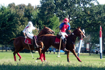 The weather was beautiful, so we spent the afternoon at West Potomac Park on the National Mall watching the 2009 America's Polo Cup Fall Classic matches between the U.S. Polo Team, American/India Pro-Am Team and the Washington Patriots. (Image taken by Sydney J. Kane on 19 Sep 2009 with FinePix F10 at ISO 200, f5.0, 1/280 sec and 24mm)