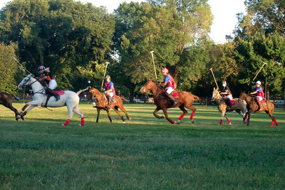 The weather was beautiful, so we spent the afternoon at West Potomac Park on the National Mall watching the 2009 America's Polo Cup Fall Classic matches between the U.S. Polo Team, American/India Pro-Am Team and the Washington Patriots. (Image taken by Sydney J. Kane on 19 Sep 2009 with FinePix F10 at ISO 400, f5.0, 1/220 sec and 24mm)