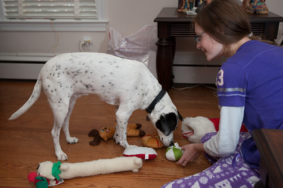 Sydney showing Dolly the dog toys Santa left on Christmas morning 2010 (Image taken by Patrick R. Kane on 25 Dec 2010 with Canon EOS-1D Mark III at ISO 200, f2.8, 1/60 sec and 30mm)