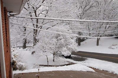 We had several inches of snow on Wednesday, February 3rd, which was followed a couple of days later with over two feet of snow! (Image taken by Kathy T. Kane on 03 Feb 2010 with Canon EOS 20D at ISO 800, f10.0, 1/320 sec and 21mm)