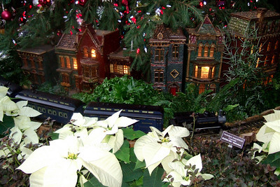 Train going around the Christmas Tree at the U.S. Botanic Garden (Image taken by Sydney J. Kane on 28 Nov 2010 with FinePix F10 at ISO 800, f2.8, 1/100 sec and 8mm)
