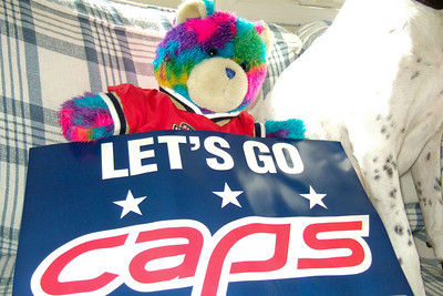 Rainbow Bear is ready for some Caps hockey action (Image taken by Kathy T. Kane on 27 Nov 2010 with FinePix F10 at ISO 400, f2.8, 1/160 sec and 8mm)