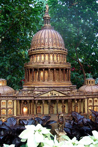 Model of U.S. Capitol created from natural materials. On display at the U.S. Botanic Garden. (Image taken by Sydney J. Kane on 28 Nov 2010 with FinePix F10 at ISO 800, f2.8, 1/45 sec and 8mm)