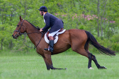 The Field Master setting the pace for the Junior Field Masters Chase. The 86th running of the Virginia Gold Cup steeplechase race at Great Meadow in The Plains, Virginia (Image taken by Patrick R. Kane on 07 May 2011 with Canon EOS-1D Mark III at ISO 100, f3.5, 1/500 sec and 400mm)