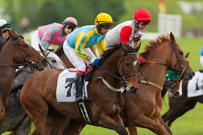 The 1st race, Sport of Kings Maiden Hurdle. has a purse of $25,000 and is approximately 2-1/2 miles over National Fences. Raven's Choice (7), ridden by the Roddy Mackenzie ends up winning with a 4-1/3 margin. The 86th running of the Virginia Gold Cup steeplechase race at Great Meadow in The Plains, Virginia (Image taken by Patrick R. Kane on 07 May 2011 with Canon EOS-1D Mark III at ISO 100, f3.5, 1/500 sec and 400mm)