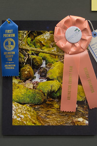 Meredith's photo was recognized as a Reserve Champion at the 2012 Arlington County Fair (Image taken by Patrick R. Kane on 12 Aug 2012 with Olympus XZ-1)