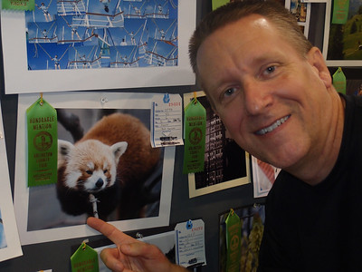 Patrick's 'Red Panda' photo received an Honorable Mention in adult color Animal(s) photos. 2012 Arlington County Fair, Photography (Department VI), Adult (Division G), Color (Section D), Animal(s) (Class 844). (Image taken by Sydney J. Kane on 11 Aug 2012 with XZ-1 at ISO 200, f2.1, 1/60 sec and 11.8mm)
