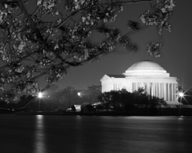 Sydney's 'Jefferson at Night' photo received an Honorable Mention in teen B&W Architecture, Structure or Sculpture photos. 2012 Arlington County Fair, Photography (Department VI), Teen (Division T), Black and White (Section C), Architecture, Structure or Sculpture (Class 831).   This year's National Cherry Blossom Festival honors the 100-year anniversary of the gift of trees (Image taken by Sydney J. Kane on 24 Mar 2012 with Canon EOS 5D at ISO 200, f32.0, 1/30 sec and 88mm)