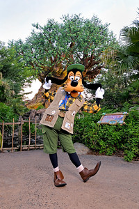 Goofy in front of the Tree of Life at Disney's Animal Kingdom
