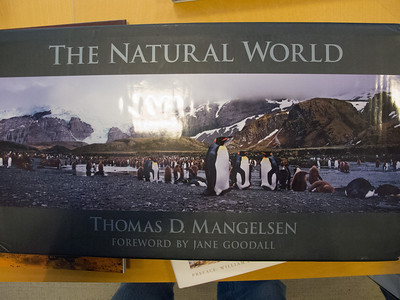 """Sydney enjoyed the photo book collection at FotoWeek DC including 'The Natural World' by Thomas D. Mangelsen, which seemed reasonably priced at $75 when compared to another book she liked, Peter Lik's 25th Anniversary Big Book for $2,000. The book was appropriately named though as it is 580 pages, 19.5"""" x 13.5"""" and 40-lbs! (Image taken by Patrick R. Kane on 12 Nov 2012 with Canon PowerShot G12 at ISO 0, f2.8, 1/20 sec and 6.1mm)"""