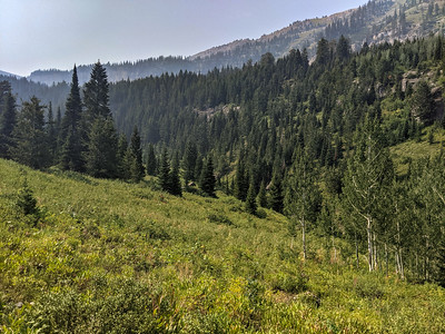 A great view during a 6.3-mile hike on the Darby Canyon Wind Cave Trail, Alta, Wyoming