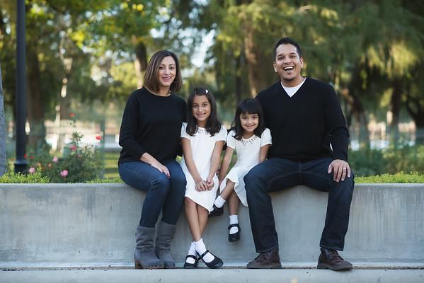 Patel Family 2015