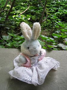 Portrait of Blueberry, Juliet's bunny.
