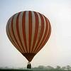 Baloon Haddocks 1989