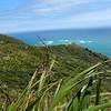 Cape Reinga 201402 5