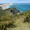 Cape Reinga 201402 7