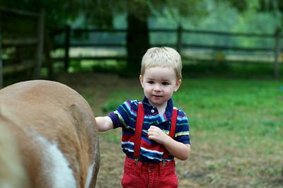 Petting Farm - July 2014