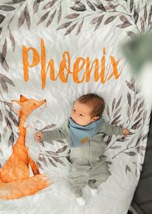 Phoenix Michael Allan Cooper 004
