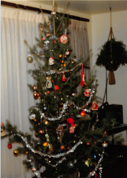 December 1980<br /> 1104 W. 680 S. Orem, UT<br /> Our first Christmas tree (a $5.99 special).