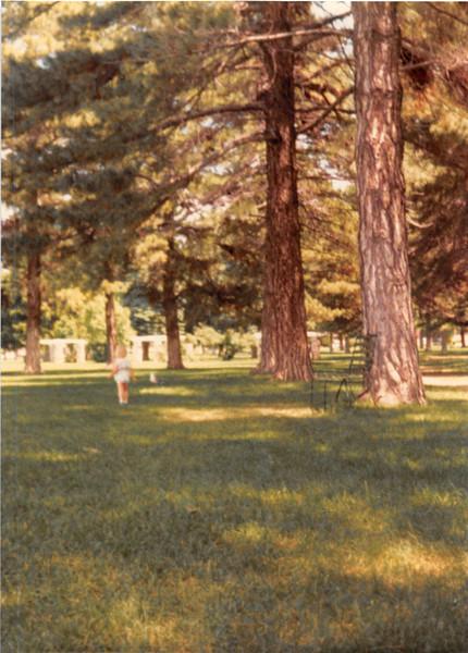 June 1981<br /> Liberty Park, Salt Lake City, UT<br /> Teresa chasing the seagulls.