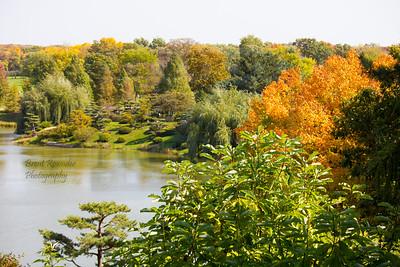 Fall 2012 Botanical Gardens