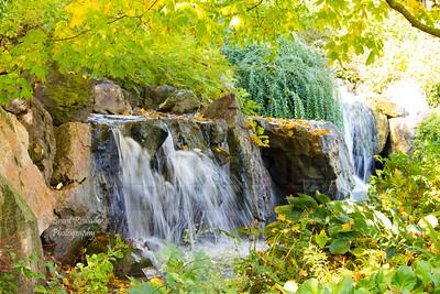 Fall 2012 Botanical Gardens #7