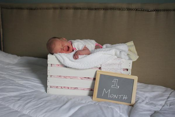 Amelia 1 month