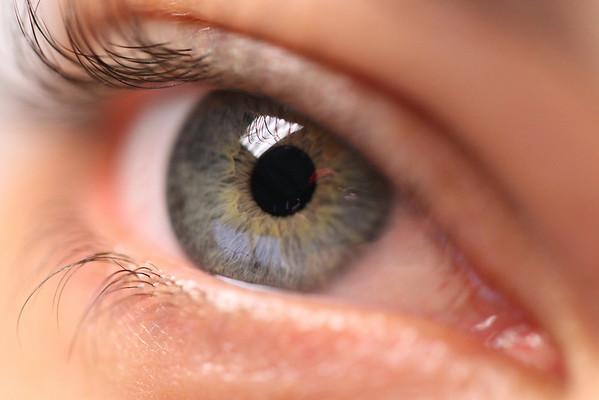 Sam's eye, taken with my new Canon 100mm macro